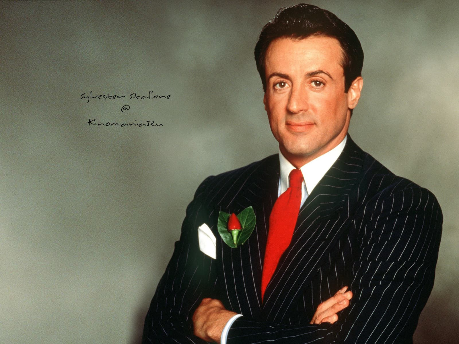 Young Sylvester Stallone Wallpapers
