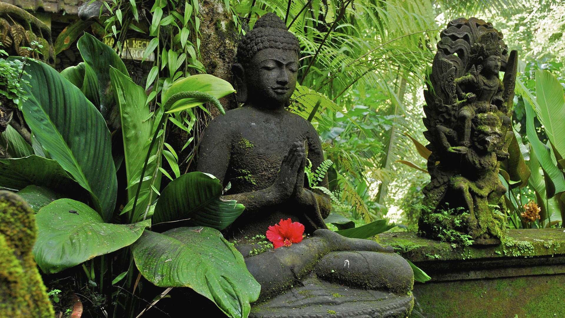 Lord buddha images for mobile 4