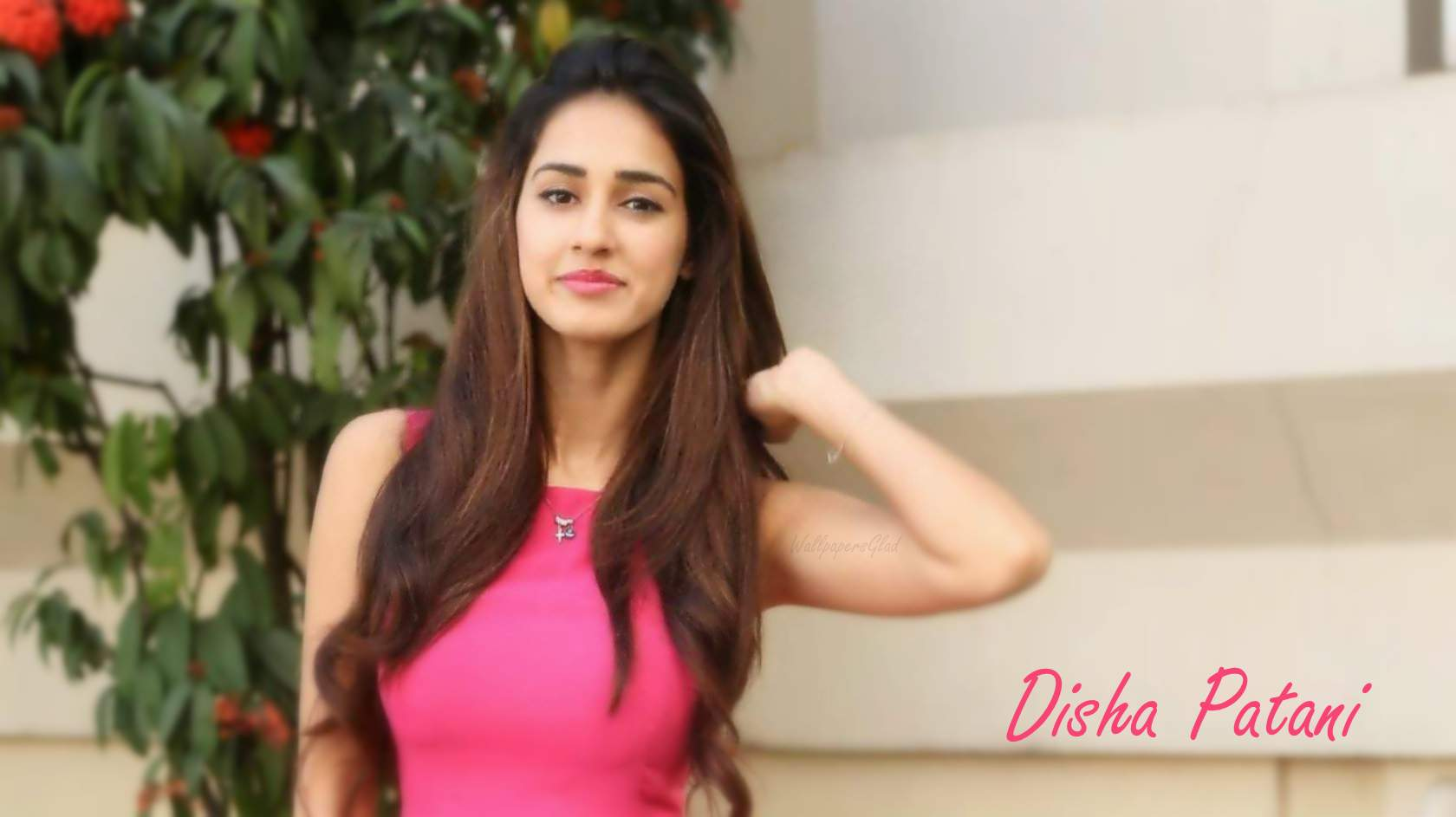 Disha Patani Images HD, Hot Pics Photos