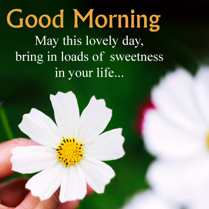 Good Morning Wishes Images for girlfriend 3