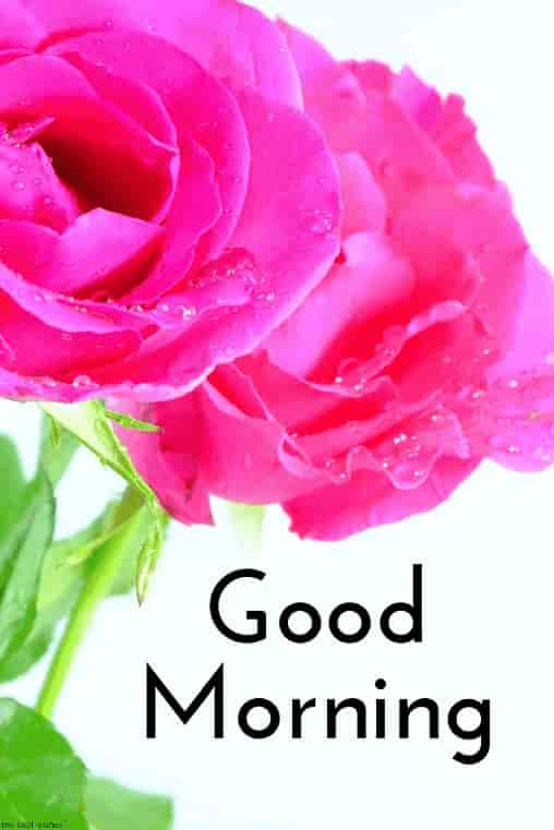 Good Morning Wishes Images for girlfriend 8