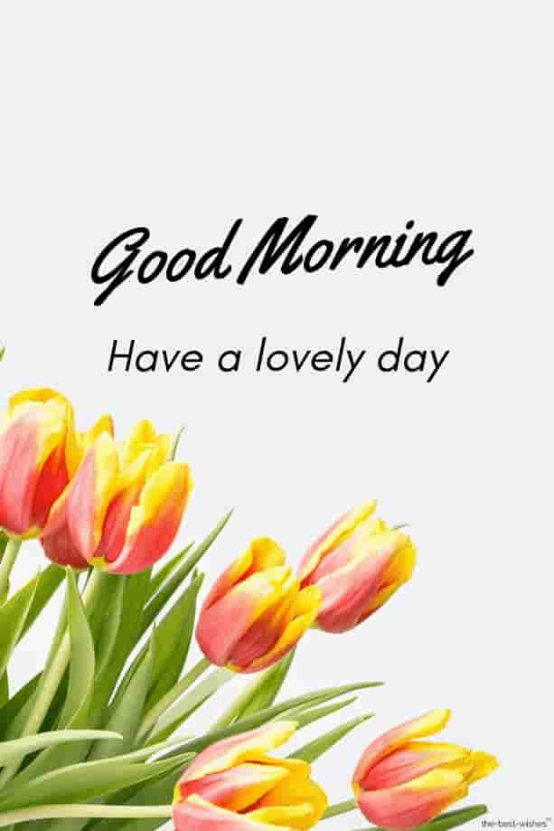 Good Morning Wishes Images for girlfriend 9