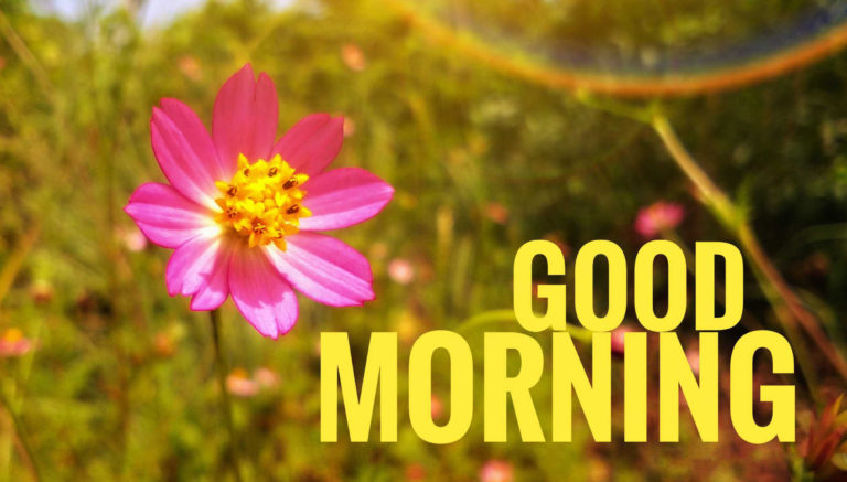 Good Morning Wishes photos 9
