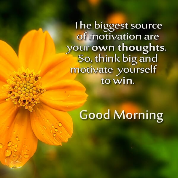 best good morning wishes 4