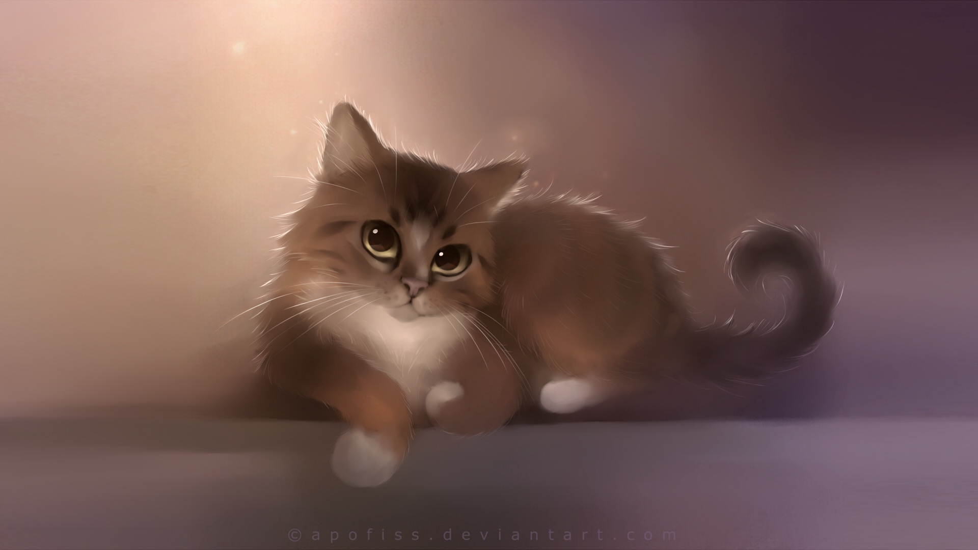 cute kitten wallpapers pictures hd 3