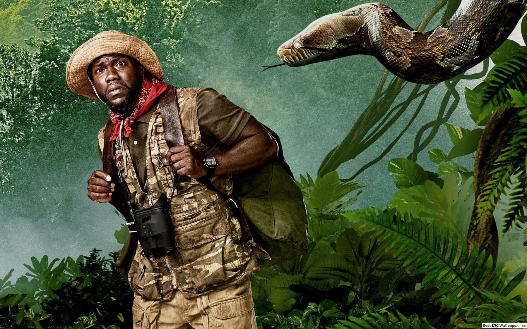 kevin hart wallpapers 2